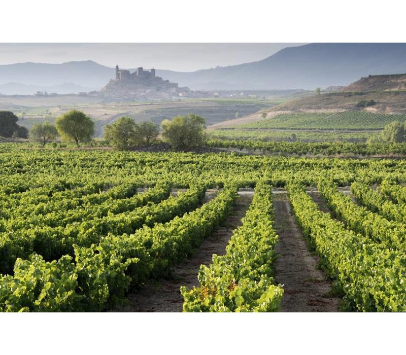 Wijnreis Spanje