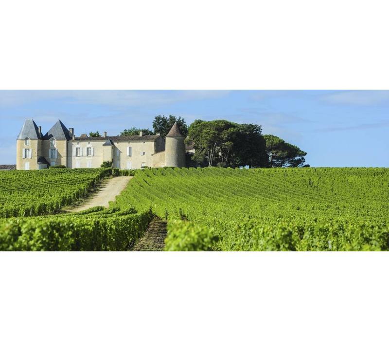 Wijnreis Frankrijk