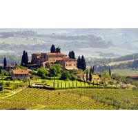 Wijntrip Authentiek Italië