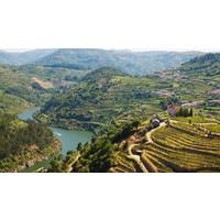 Wijntrip Spanje & Portugal