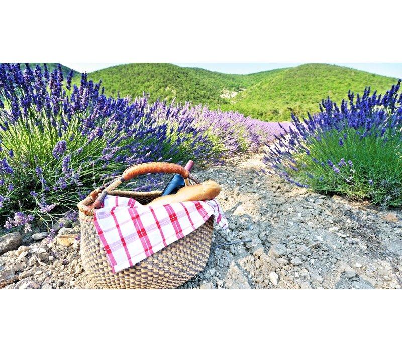 Wijntrip Mediterraans Frankrijk