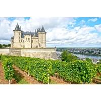 Mini-Wijntrip Feestelijk Frankrijk