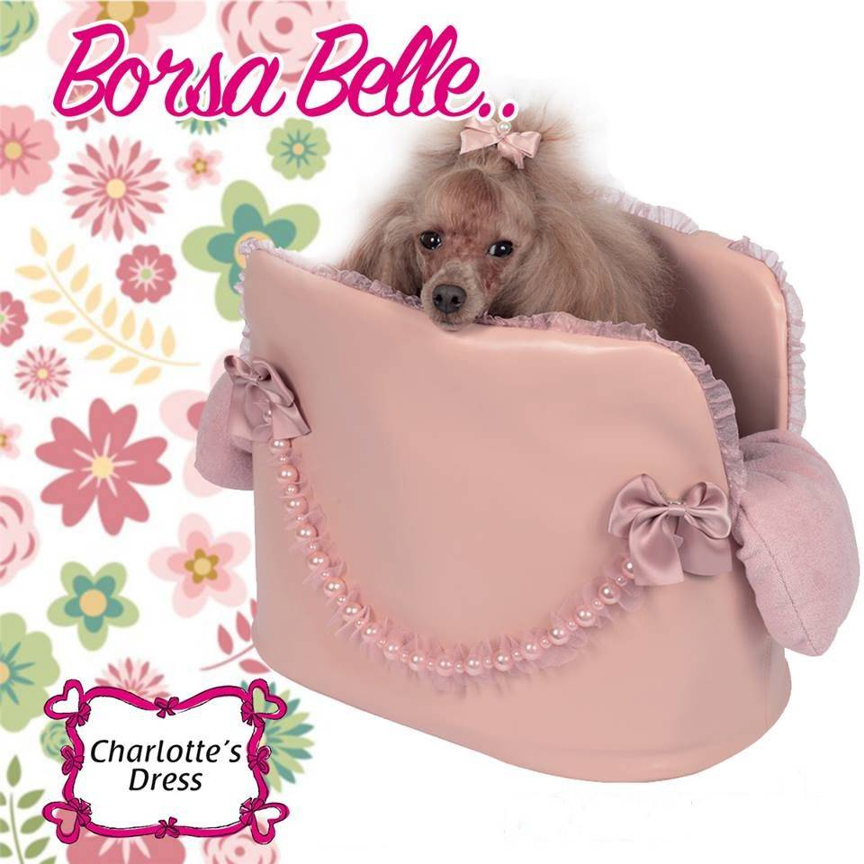 Charlotte's dress Borsa belle