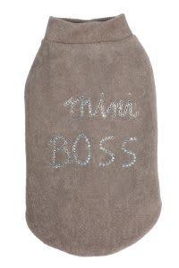 Charlotte's dress mini boss