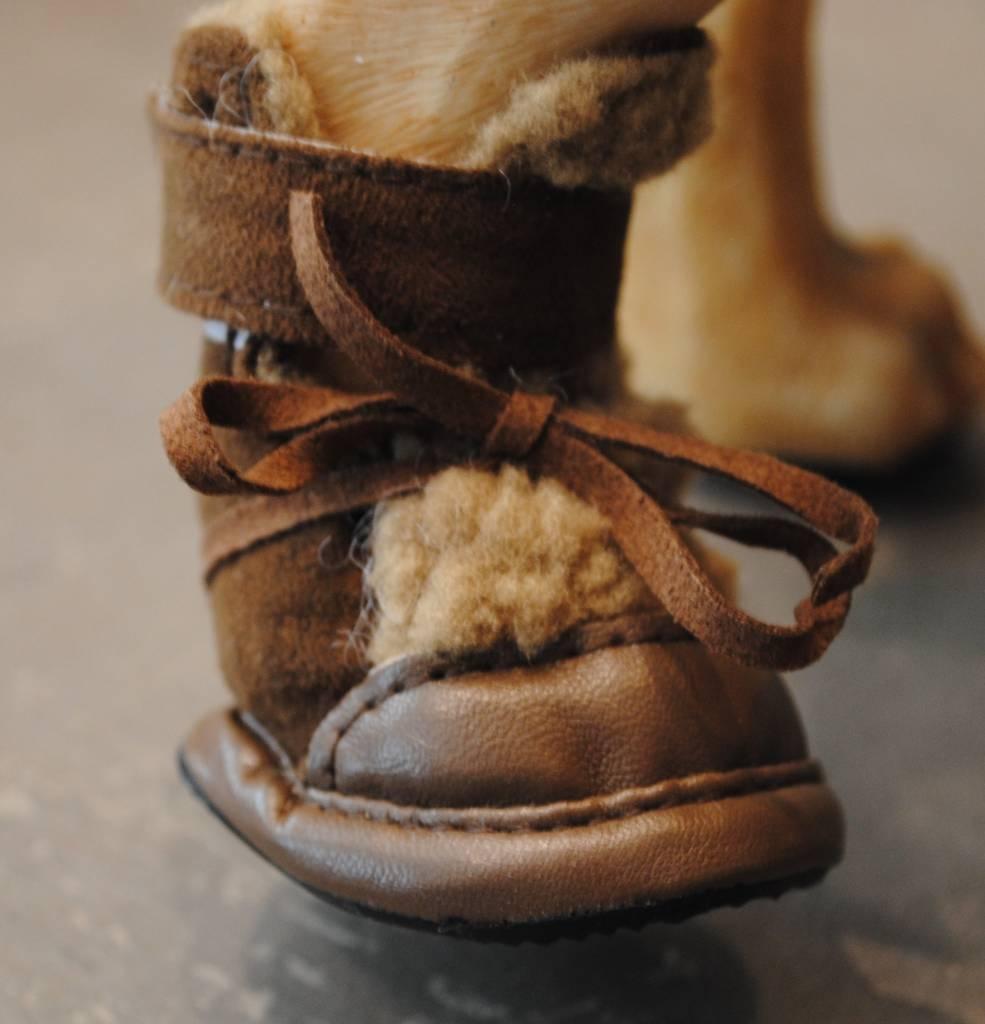 Is Pet Walking shoes