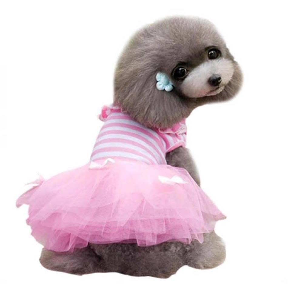 Snoef kleedje roze tutu