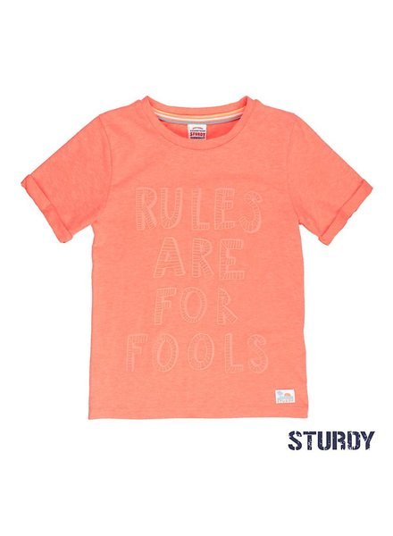 Sturdy T-shirt rules Pool party Sturdy