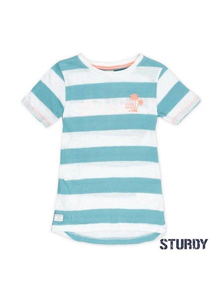 Sturdy T-shirt mint streep Pool party Sturdy