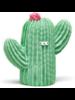 Cactus sensory Lanco