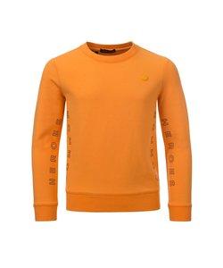 COLLIN crewneck sweater (8302) CH