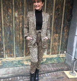 200 Suit Leopard Brown