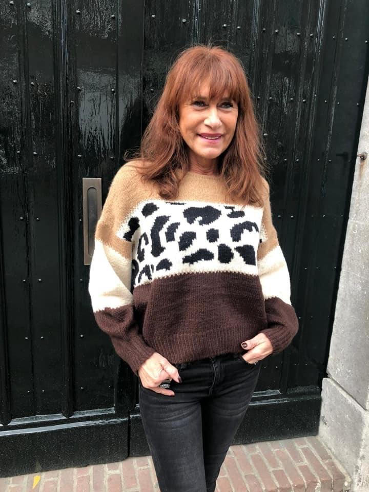 3066 Millenium Sweater Leopard Footprint Brown