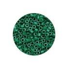 Miyuki Delica 11/0 - DB0656 - Dyed Green