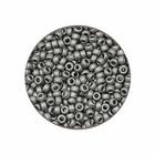 Rocailles Miyuki 11/0 - Nickel Plated Mat N°190F- 5gr