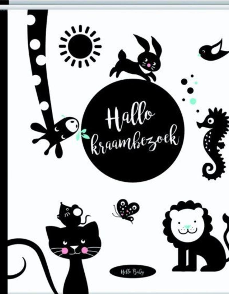 Hello Baby Hello Baby - Hallo Kraambezoek boek