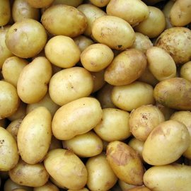 Suikerarme Aardappel puree Proslank 7 sachets