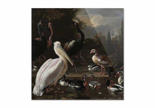 Een pelikaan en ander gevogelte bij een waterbassin • vierkante afdruk op plexiglas