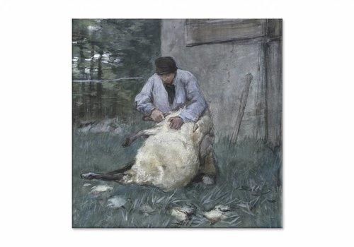 Schapenscheerder • vierkante afdruk op canvas