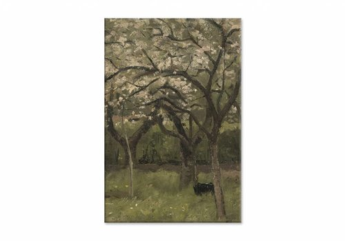 Bloeiende boom in boomgaard • staande afdruk op canvas