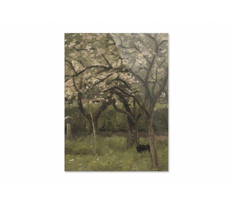 Bloeiende boom in boomgaard • staande afdruk op plexiglas