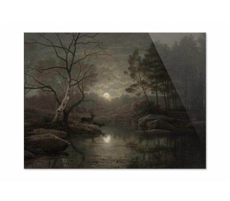 Boslandschap bij maanlicht • liggende afdruk op plexiglas
