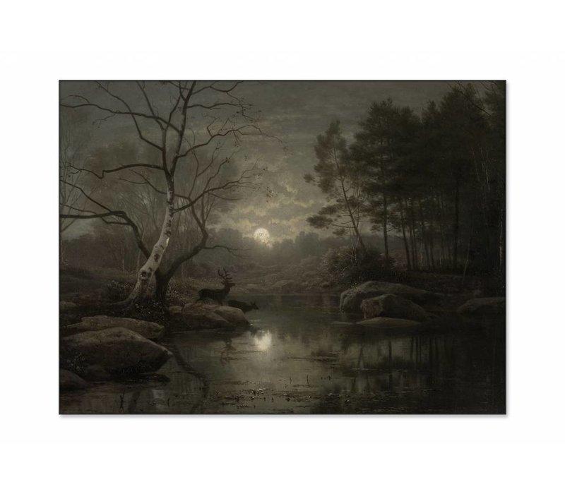Boslandschap bij maanlicht • liggende afdruk op textiel