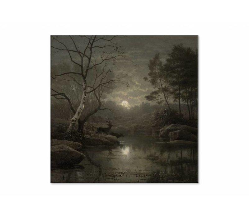 Boslandschap bij maanlicht • vierkante afdruk op canvas