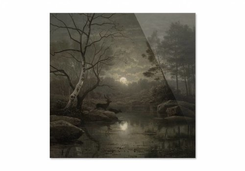 Boslandschap bij maanlicht • vierkante afdruk op plexiglas