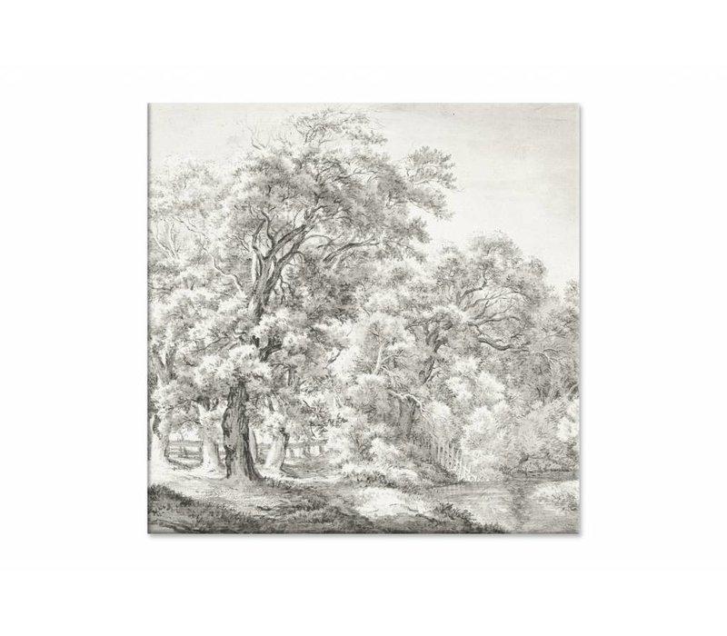 Landschap met bomen bij water • vierkante afdruk op canvas