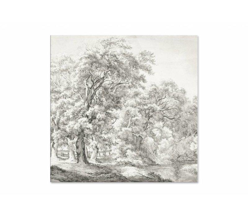 Landschap met bomen bij water • vierkante afdruk op plexiglas