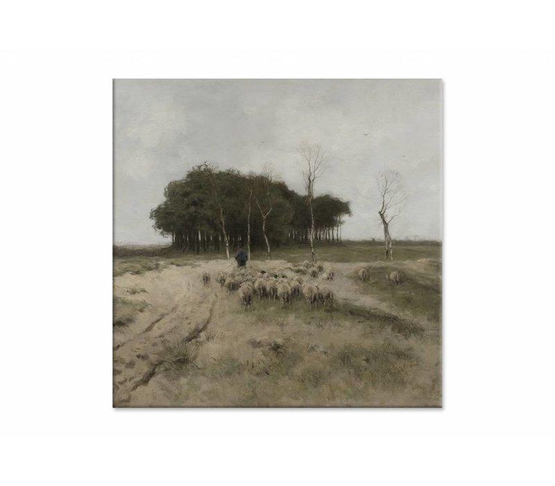 Heide bij Laren • vierkante afdruk op canvas