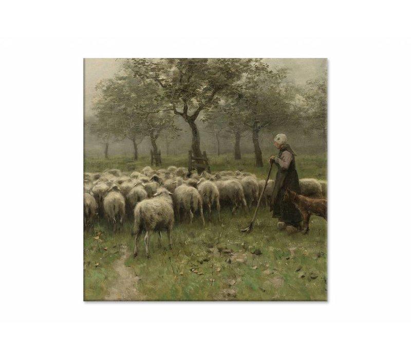 Herderin met kudde schapen • vierkante afdruk op canvas