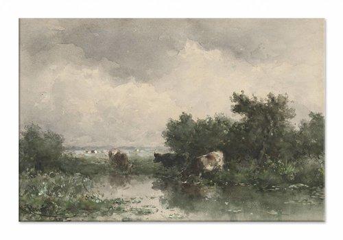 Koeien aan een plas • liggende afdruk op canvas