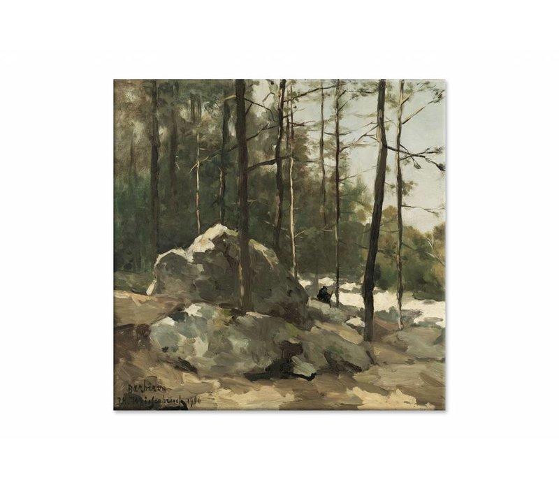 Bosgezicht nabij Barbizon • vierkante afdruk op canvas