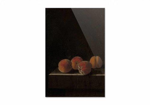 Vier abrikozen op een stenen plint • staande afdruk op plexiglas