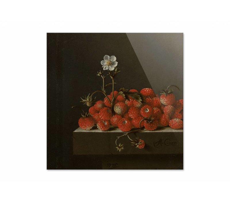 Bosaardbeien • vierkante afdruk op plexiglas