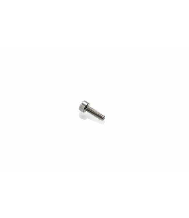Ultimaker DIN 912 M2.5x8 (#2142)