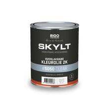 Skylt Paintable Color Oil 2K