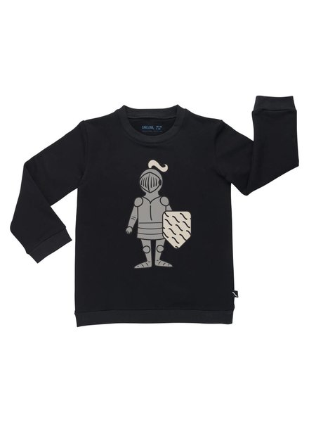 CarlijnQ Sweater - Knighty print