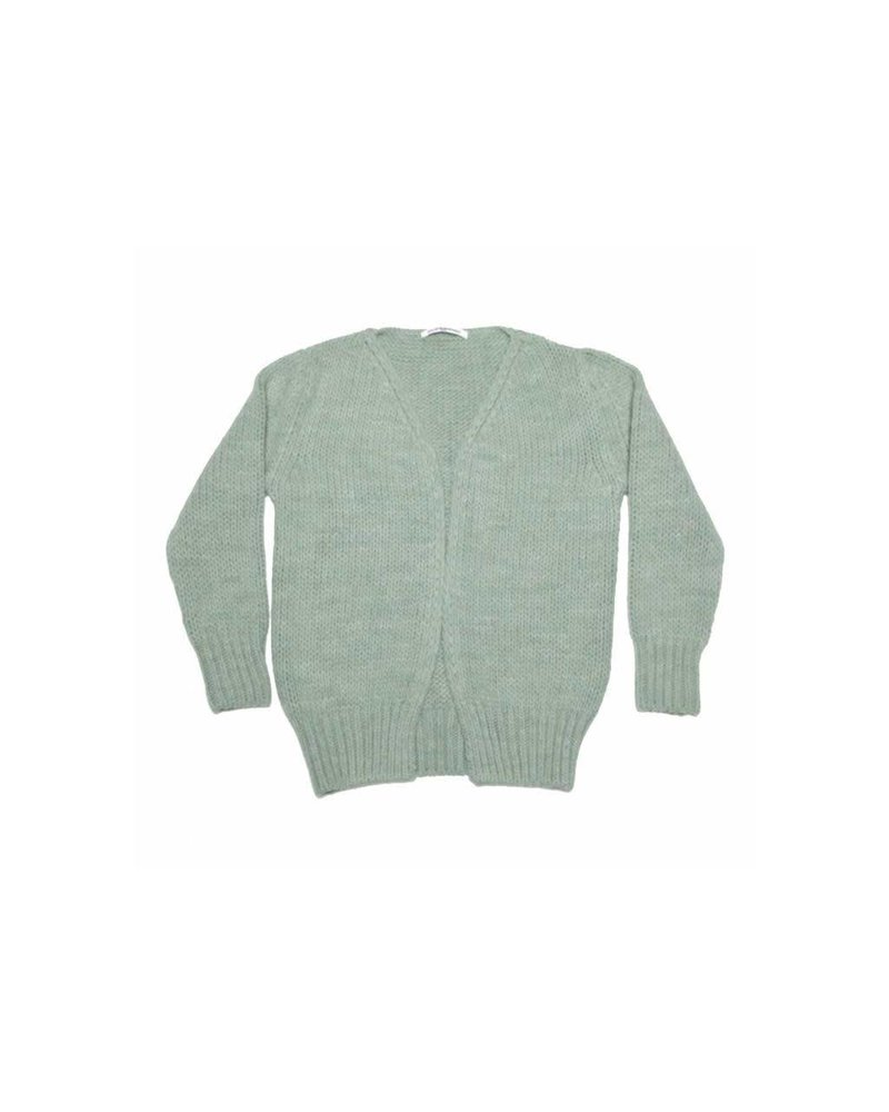 Mingo Cardigan - Duck green