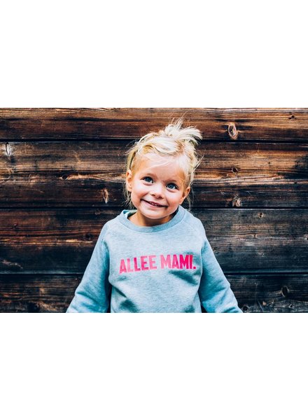 Ket.Official Sweater Allee mami - ice blue/fl roos