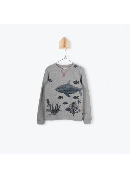 Arsene et les Pipelettes Sweatshirt Chiné Fantasie Print Requin - Gris Chiné