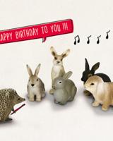 Leuke kaartjes Happy birthday to you!!!