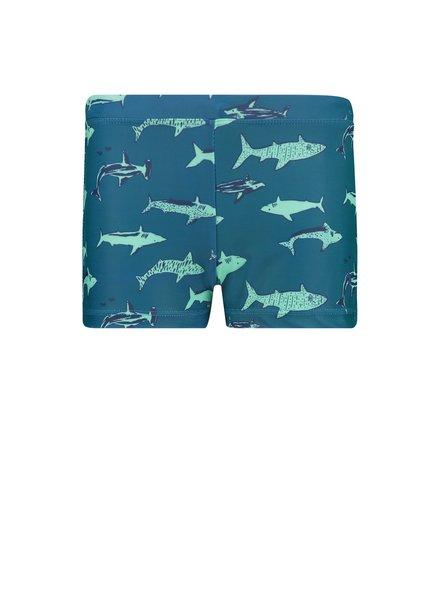 Shiwi Boy Swimboxer - Shark Blauw