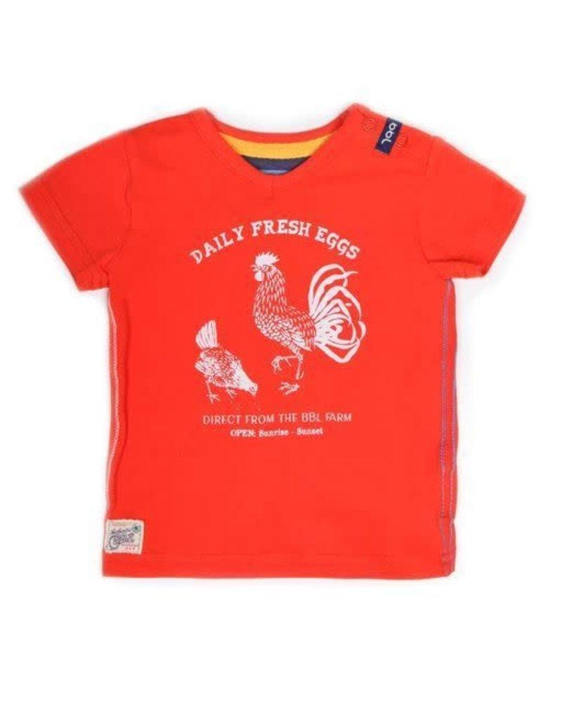 T-shirt K/M - Maat 62