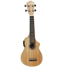 Tanglewood Union Series TU1 CE