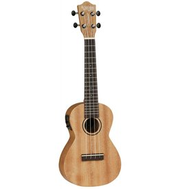 Tanglewood Union Series TU3 E