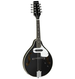 Tanglewood Electric Mandolin, F Hole