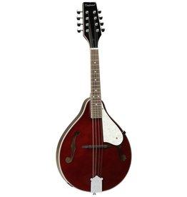 Tanglewood Mandolin, F Hole, TWM T WR