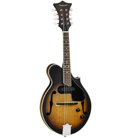 Tanglewood Electric Mandolin, TWM F VS E